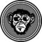Drunken Monkey Rosenheim
